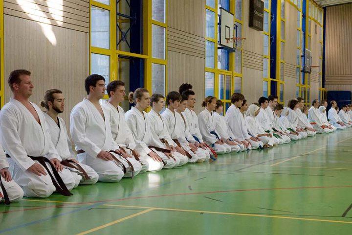 Lehrgangsteilnehmer, Karateverein Zanshin Göttingen