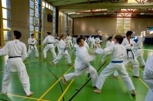 Karatelehrgang Zanshin Göttingen